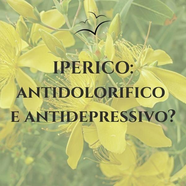 IPERICO-antidolorifico-e-antidepressivo